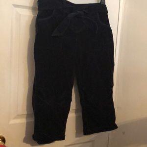 Short velour pants